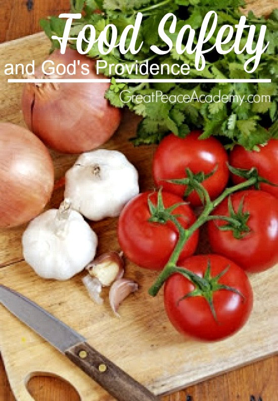 Food Safety and God's Providence, Plastic or Wood, Which is Safer? | Great Peace Academy