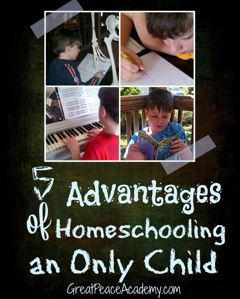 advantages and disadvantages of home schooling Homeschooling has many critics and is definitely not for everyone before deciding to homeschool your children you must be aware of the very real disadvantages of homeschooling.