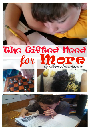Gifted Homeschooling and the Need for More