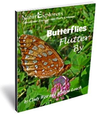 Butterflies Flutter By 3D Cover